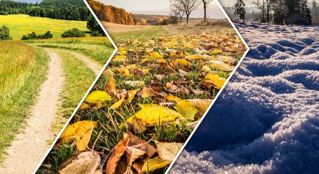 Autumn Driving tips - CRASH Services